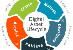 Digital asset lifecycle